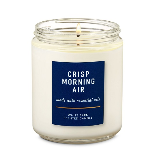 BATH AND BODY WORKS - Crisp Morning Air - 1 Wick Candle